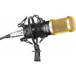 KitMicrophone à Condensateur NW-800