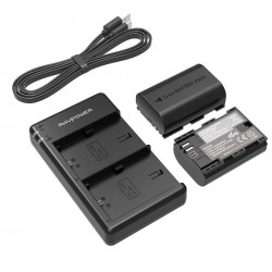 Lot de 2 Batteries & chargeur